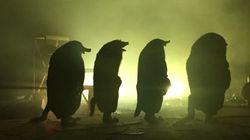 Pour la Nuit Blanche, des taupes envahissent