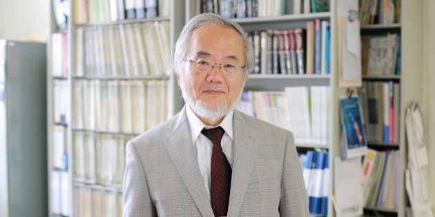 Yoshinori Ohsumi, a professor in Tokyo Institute of Technology is seen at his laboratory office in Yokohama,...