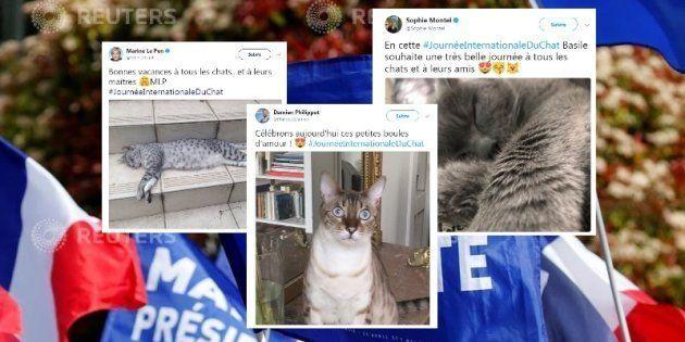 Journée internationale du chat: les cadre du FN tenaient à faire savoir qu'ils aiment les