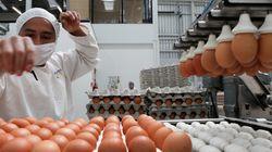 Pourquoi nous ne savons toujours pas quels produits ont été contaminés par le