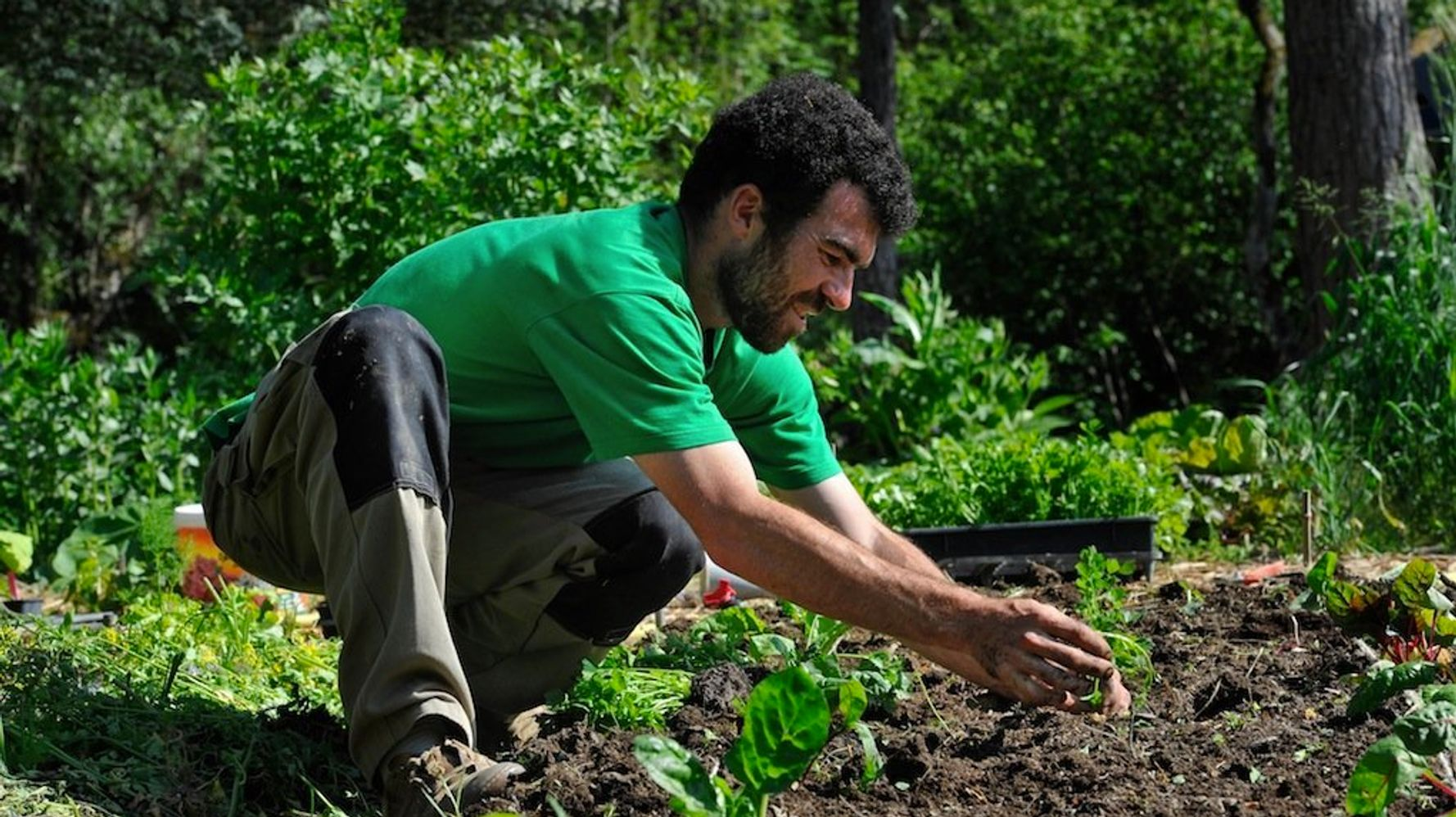 Comment Arroser Jardin Pendant Vacances les réflexes à avoir pour bien entretenir son jardin pendant
