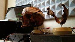 Il utilise un crâne humain pour faire la bande son d'un jeu