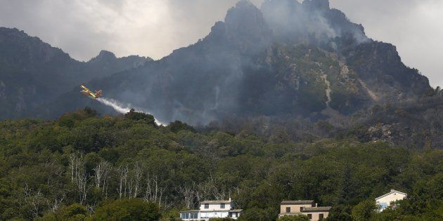 Un Canadair intervient sur un feu à Sisco, en Corse, le 12