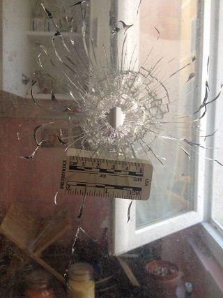 Cette ex-Femen témoigne après avoir reçu une balle dans sa fenêtre: