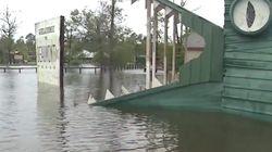 350 alligators menacent de s'échapper dans les rues de Houston à cause des