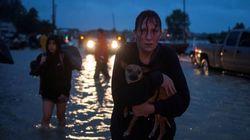 Houston impose un couvre-feu pour éviter les pillages après le passage de la tempête