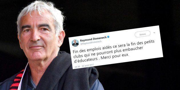 Emplois aidés: Pourquoi Raymond Domenech met les pieds dans le