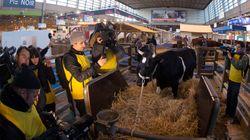 BLOG - 5 leviers de transformation pour que notre agriculture soit humaniste et