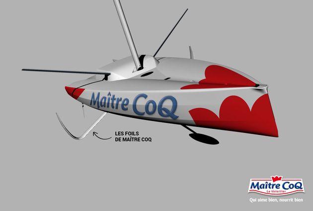 Schéma du foil de l'embarcation Maître CoQ, qui lui ne comporte que deux parties: le shaft et le plan
