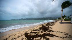 Saint-Martin et Saint-Barthélemy redoutent désormais le passage de l'ouragan