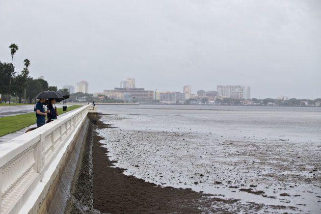 La baie de Tampa, où l'eau a reculé de plusieurs