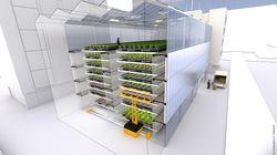 Voici la ferme de demain, urbaine, verticale et sans