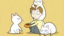 Si vous aimez les chats, vous vous reconnaîtrez dans ces