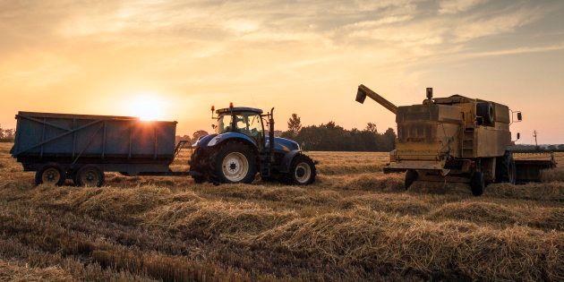Pour une remise en état du système agroalimentaire
