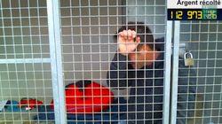 Les larmes de Rémi Gaillard, enfermé dans une cage de la SPA depuis 2