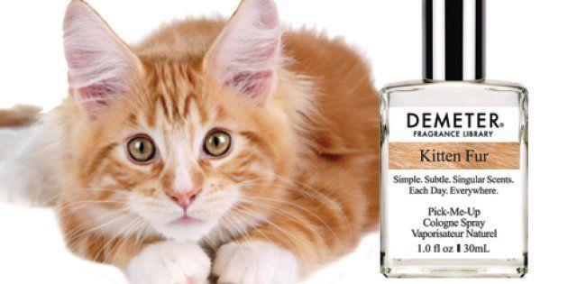 Déjà habitué à proposer des parfums à la pizza ou au popcorn, Demeter vient de commercialiser un parfum...