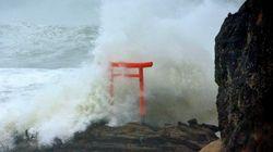 Fort séisme au large de Fukushima, l'alerte au tsunami