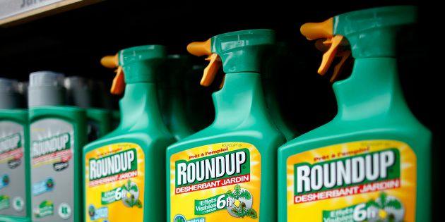Comment se débarrasser du roundup et autres herbicides