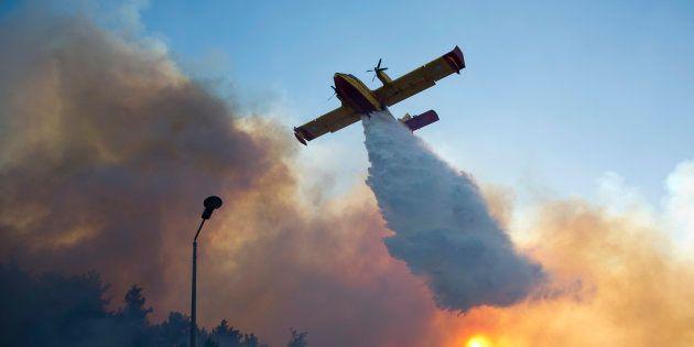 Un avion grec tente de maîtriser les flammes qui ravagent Haifa, en Israël, le 24 novembre