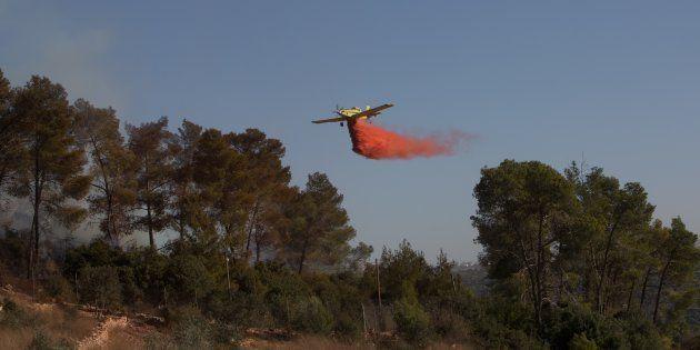 Fin d'alerte en Israël après une série d'incendies
