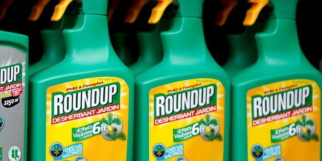 L'Italie se prononce pour l'interdiction du glyphosate dans l'Union européenne