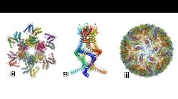 VIH, Zika, Alzheimer... comment la découverte des prix Nobel de chimie a révolutionné la