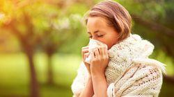 Allergique aux pollens? Le vrai du faux sur la