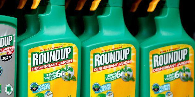 Le Parlement européen se prononce pour la disparition du glyphosate d'ici fin 2022 (Image