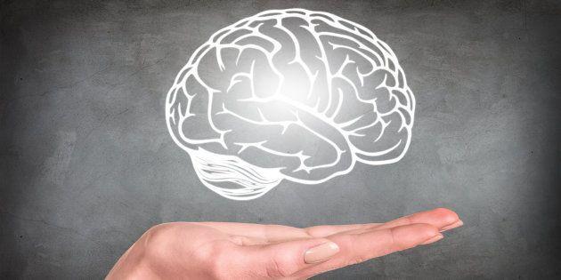 Qu'est-ce qui dans notre cerveau conditionne nos orientations