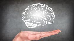 BLOG - Qu'est-ce qui dans notre cerveau conditionne nos orientations
