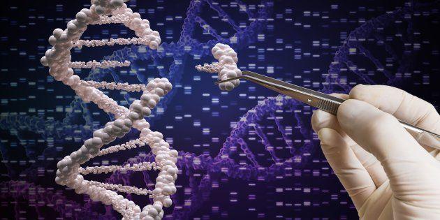 Après les ciseaux, voici le crayon à ADN qui pourrait s'attaquer aux maladies