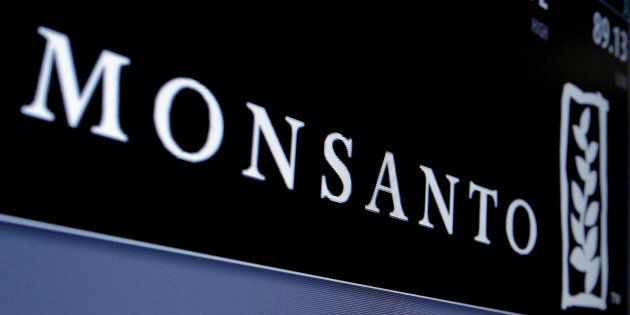 Monsanto logo is displayed on a screen where the stock is traded on the floor of the New York Stock Exchange...