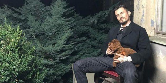Orlando Bloom et son chien