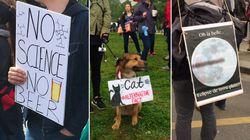Le meilleur des pancartes dans les marches pour les sciences en France et