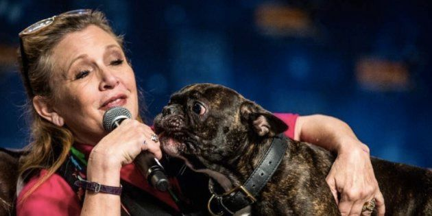 Carrie Fisher et son chien