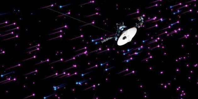 Voici les premiers êtres vivants que l'on pourrait envoyer vers une autre étoile (photo d'illustration,...