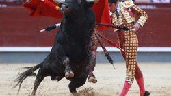 La SPA porte plainte contre les organisateurs de corrida pour
