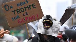 L'interdiction du glyphosate pourrait côuter 500 millions d'euros à la