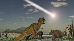 Selon cette nouvelle théorie, l'extinction des dinosaures est due à leurs