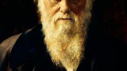 BLOG - Darwin: