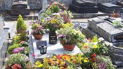 La tombe de Romy Schneider profanée dans les