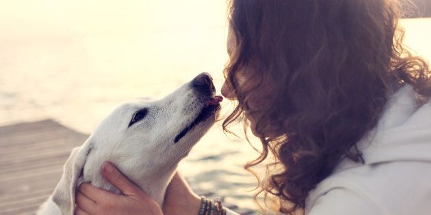 Le flair de l'homme n'a rien à envier à celui du chien, surtout quand il est question de