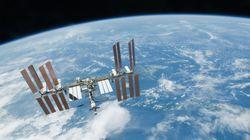 Des chercheurs ont envoyé du sperme lyophilisé dans l'espace, voici leur