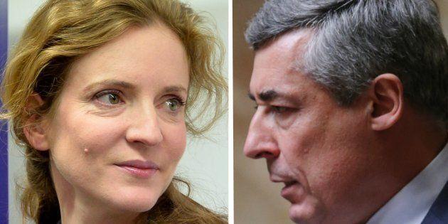 L'ancienne ministre Nathalie Kosciusko-Morizet et le député des Yvelines Henri