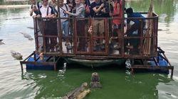 Cette ferme aux crocodiles a dû fermer à cause de cette