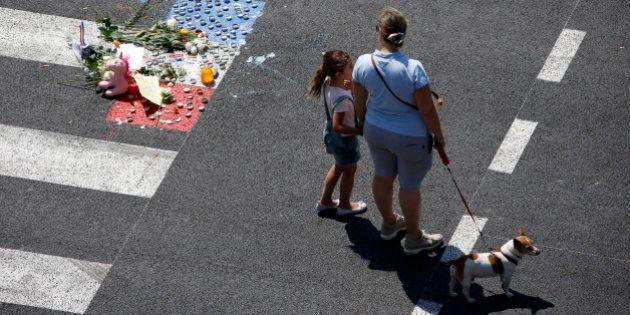 Mobilisation pour sauver les animaux des victimes de l'attentat de