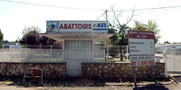L'abattoir d'Alès fermé par la mairie après une vidéo montrant des animaux