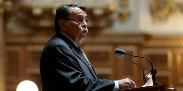 Sénatoriales 2014: les militants de la Manif pour tous saluent la défaite de Jean-Pierre