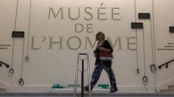 Découvrez le nouveau Musée de