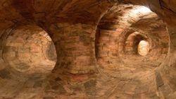 Pénétrez dans ce mystérieux labyrinthe de racines